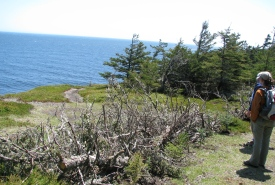 Gaff Point lookout, Nova Scotia (Photo by NCC)