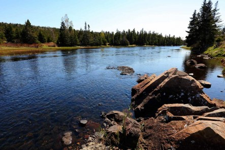 Salmonier River, NFLD (Photo by Mike Dembeck)