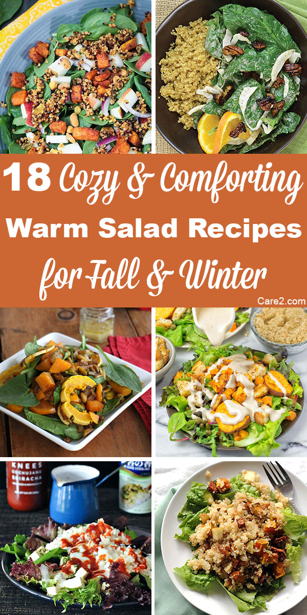 Cooler weather is rolling in, but that doesn't have to mean giving up delicious, good-for-you salads. These warm salads will keep you feeling happy and healthy all winter long.