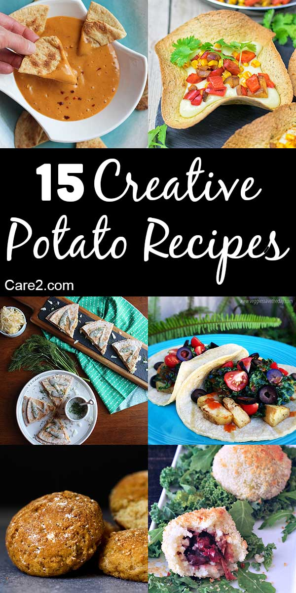 Mashed or scalloped potatoes are a holiday staple, but there are so many other delicious ways to enjoy a hearty spud. Try one of these creative potato dishes!