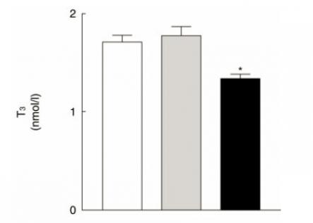 t3-concentration-after-carb-restriction