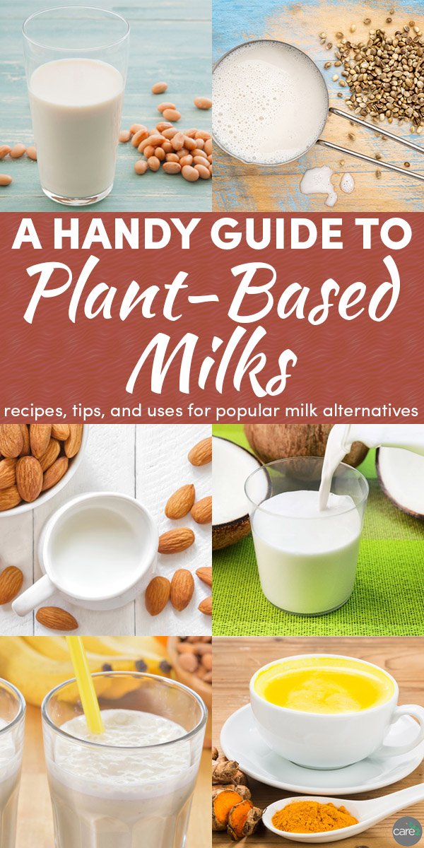 There are SO many plant-based milks available now. Let's take a look at the deliciously dairy-free milk options that you can make or buy!