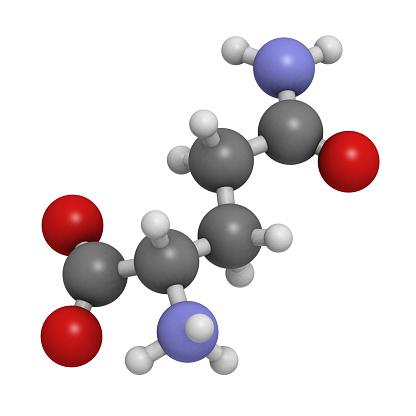 L-Arginine and L-Glutamine