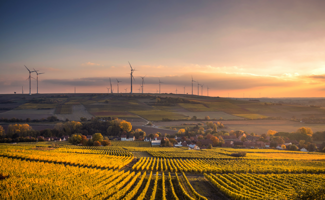 Renewable Energy (2)