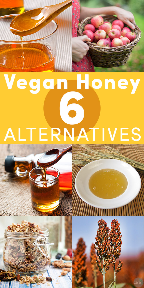 Honey is not vegan, but luckily there are delicious alternatives to replace it in any recipe.  Try these vegan alternatives to honey!