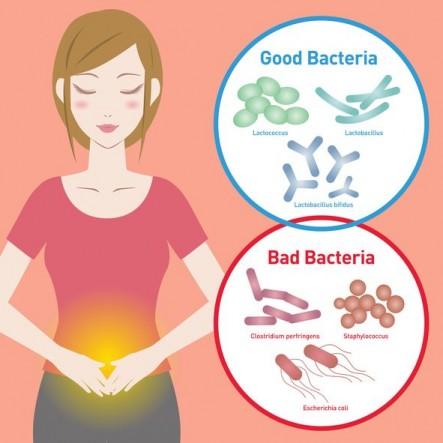 Probiotics-May-Help