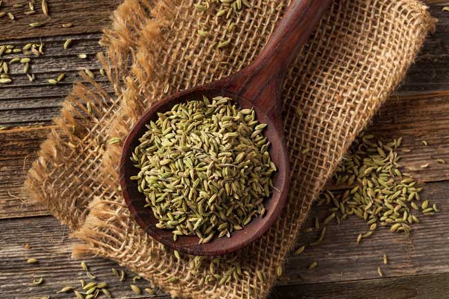 Fennel Seeds - Care2
