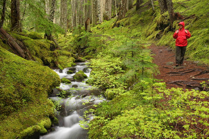 Ramona Creek Mount Hood Wilderness Oregon USA