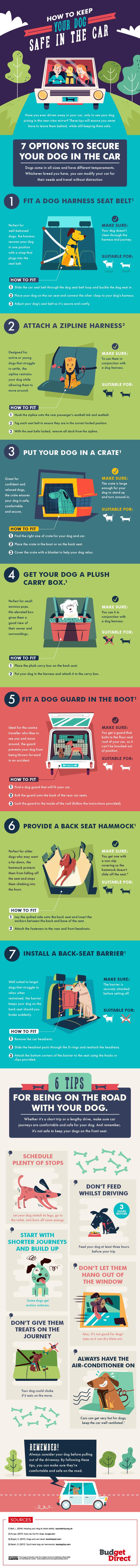 DESIGN - How-to-keep-dog-safe-in-the-car (1)