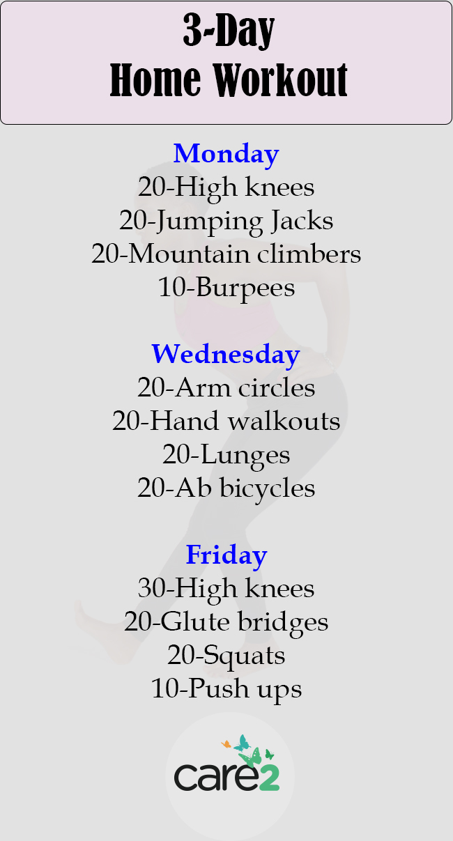 3 Day Home Workout Routine