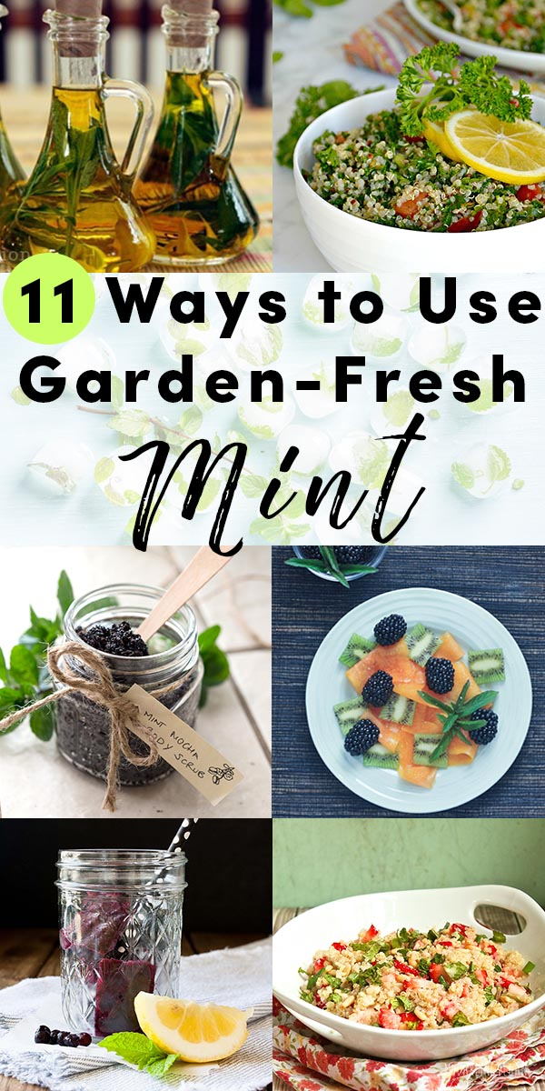 If you planted mint this year, chances are it's taking over. That's how mint does. Try these tasty ways to preserve and use all of the mint from your garden.