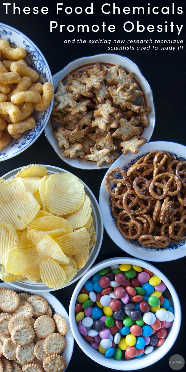 A recent study used a new technique to look at how common chemicals in your food could contribute to obesity.