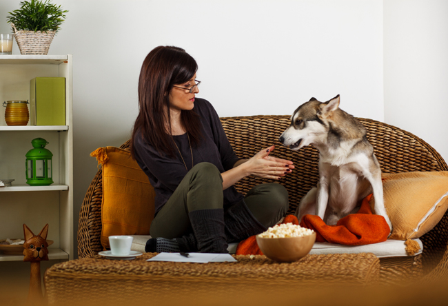 Brunette woman relaxing in living room with Siberian Husky