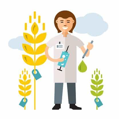 Does Maltodextrin Contain GMOs