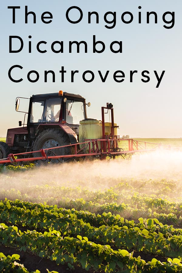 EPA is adding some light regulations on dicamba use, but the controversy and problems surrounding dicamba-tolerant crops seem far from over.