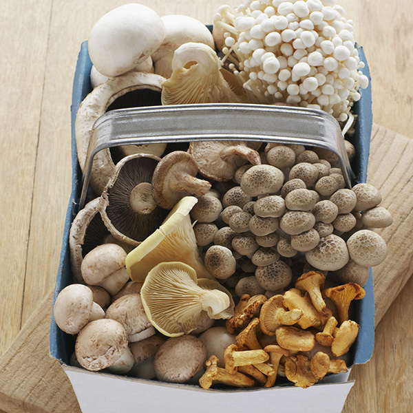 Mushrooms Contain Compounds that Protect us from Age-Related Diseases
