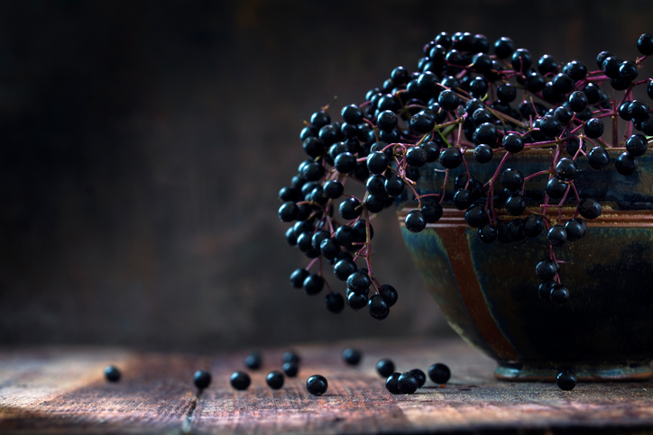 Black elderberries (Sambucus nigra) in a bowl, dark rustic wood
