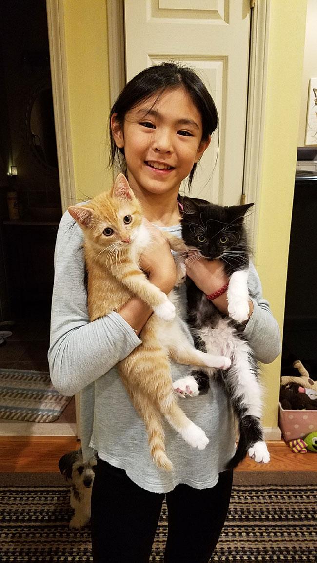 girlwithcats