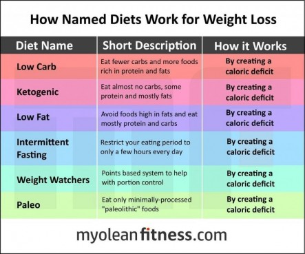 All-Diets-Work-In-The-Exact-Same-Way-They-Cut-Your-Calorie-Intake