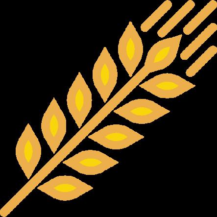 Processed-Grains