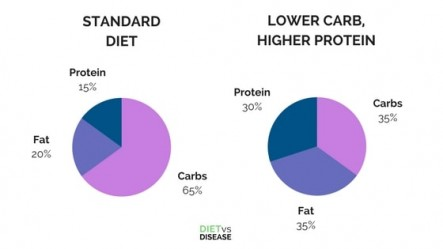 STANDARD-DIET-vs-LOWER-CARB-HIGHER-PROTEIN-DIET