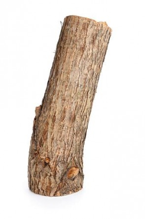 White-Willow-Bark