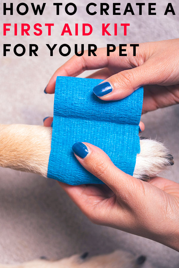 While pet first aid kits can be purchased through the American Red Cross or at many local pet stores you can also build your own.