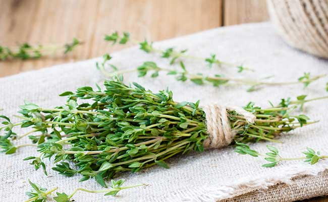 Thyme is a perfect herb for beginners to grow.
