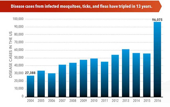 Insect-Borne Disease Chart