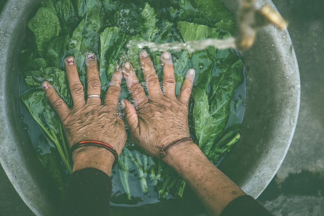 Women washing vegetable under tap water