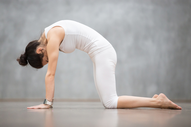 Beautiful Yoga: Cat, Marjaryasana pose