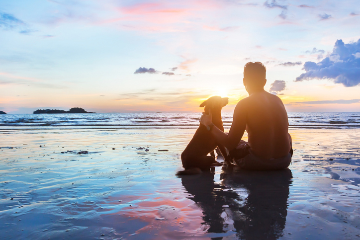 friendship concept, man and dog sitting together on the beach