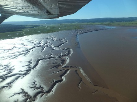 Flying over the vast mudflats at Johnson's Mills, NB (Photo by NCC)