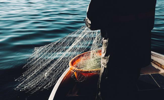 man pulls in a fishing net on a boat