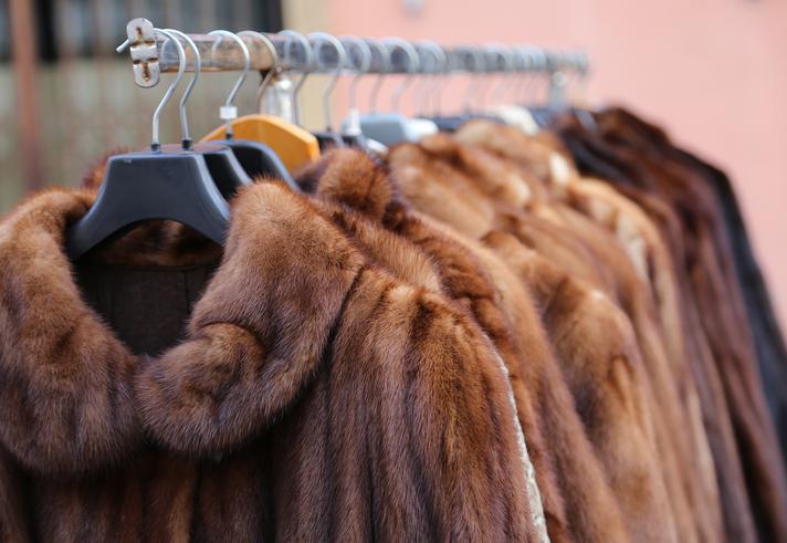 Big Win: The Entire City of Los Angeles Bans Fur Sales!