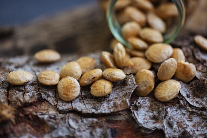 Superfood Sacha Inchi Nuts