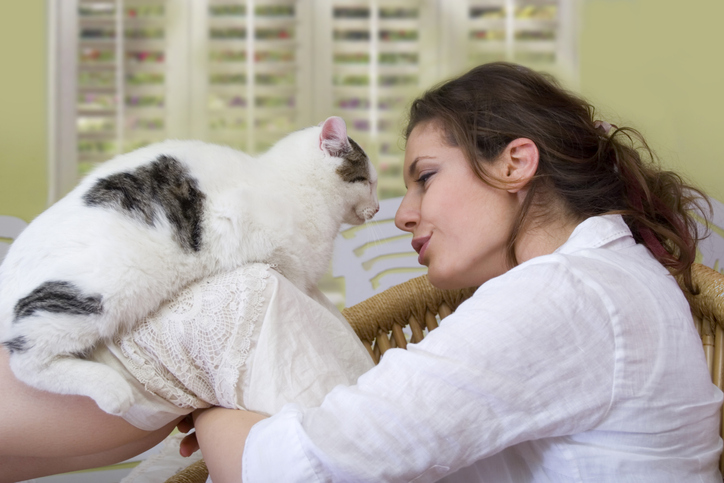 a person talks to a black and white cat