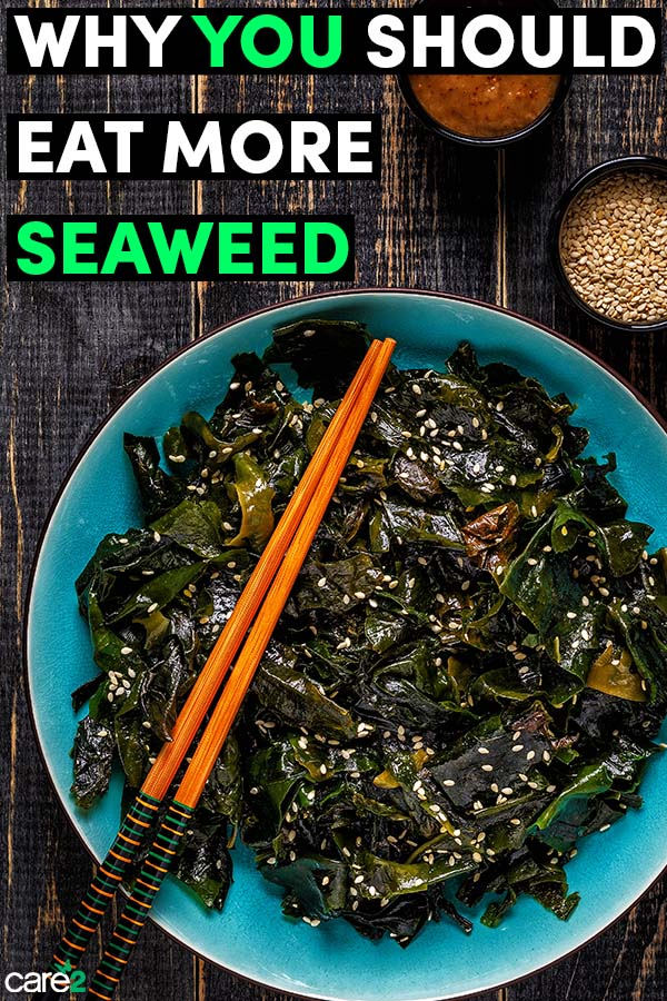 12 Delicious Reasons to Eat more Seaweed