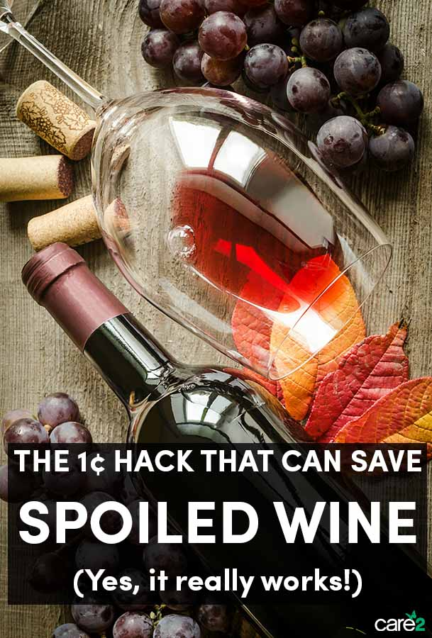 Problem Solved: This $.01 Hack Will Save Your Spoiled Wine