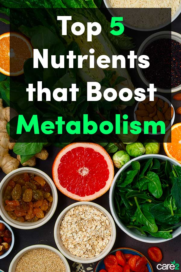 Top 5 Nutrients that Boost Metabolism