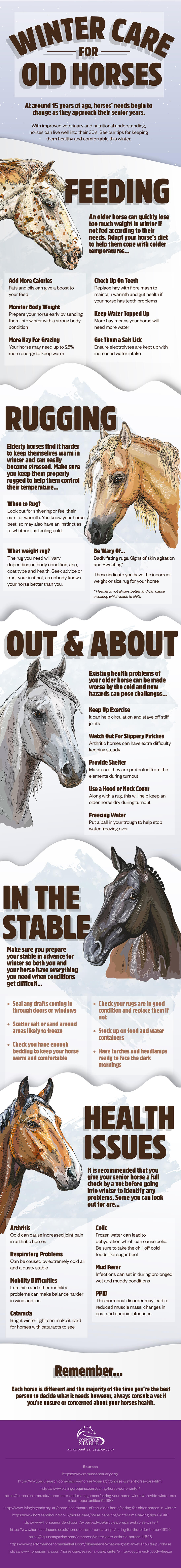 Winter care for old horses infographic