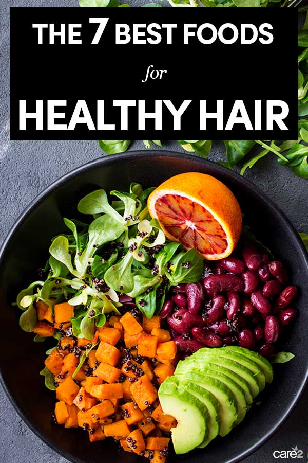 The 7 Best Foods You Can Eat for Healthy Hair