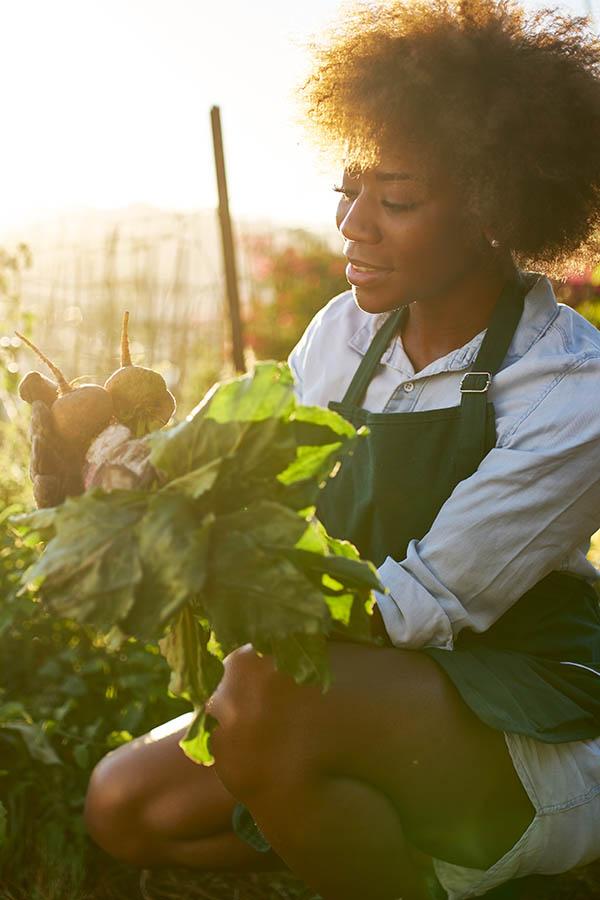 10 Heirloom Seeds for Dazzling Vegetables