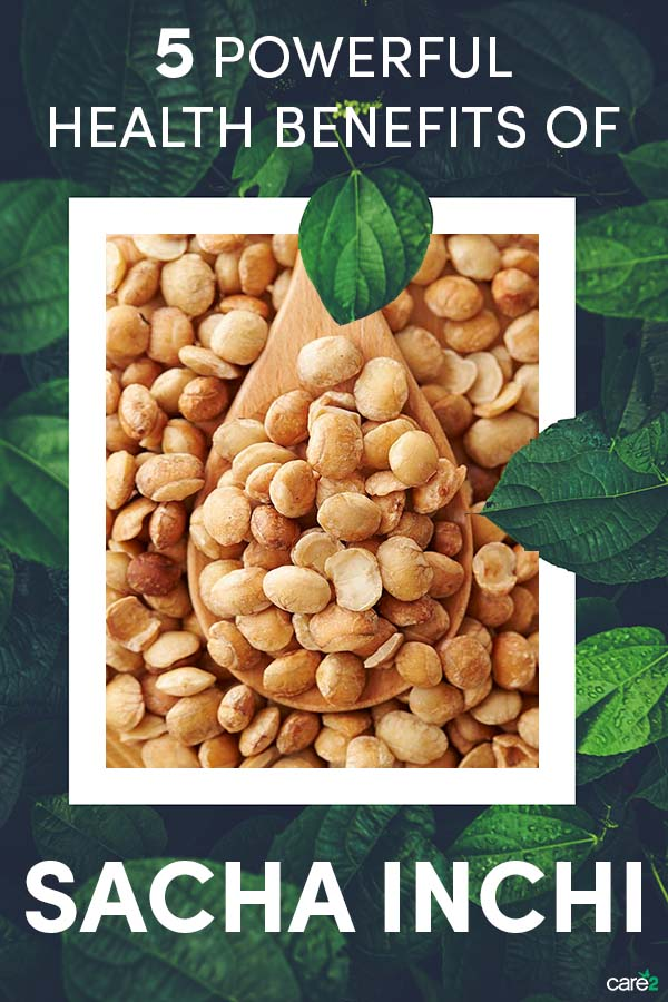 5 Health Benefits of Sacha Inchi Seeds