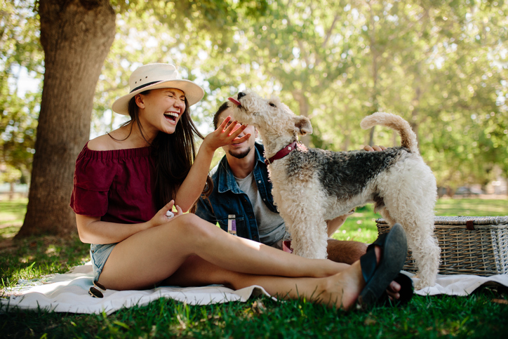 A couple has a picnic with their dog.