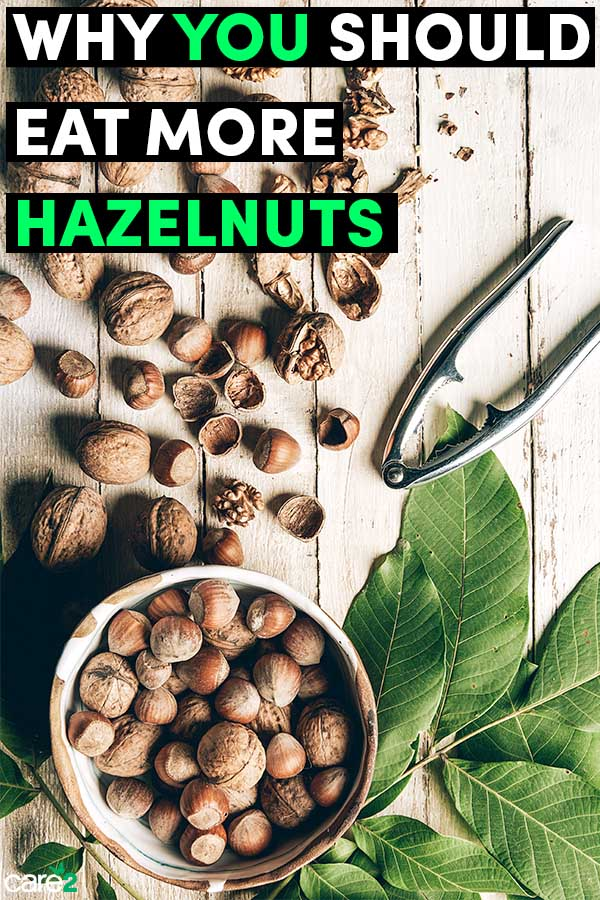 9 Reasons to Eat More Hazelnuts