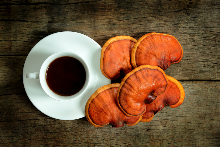 Cup of reishi tea and fresh Lingzhi mushroom on dark wooden floor.
