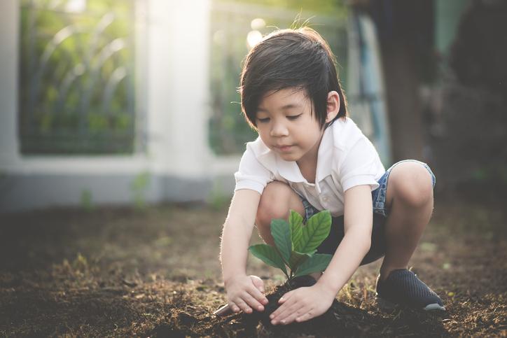 a child puts dirt around a plant in a garden