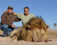 MAKE HUNTING THE LION ILLEGAL IN SOUTH AFRICA NOW!!