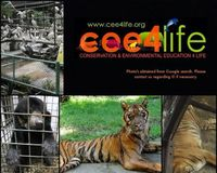 Stop the Deliberate Cruelty of the Surabaya Zoo Animals INDONESIA - Cee4life